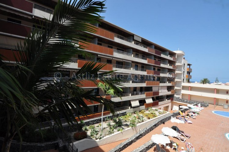 Calle Hondura - Puerto de Santiago -