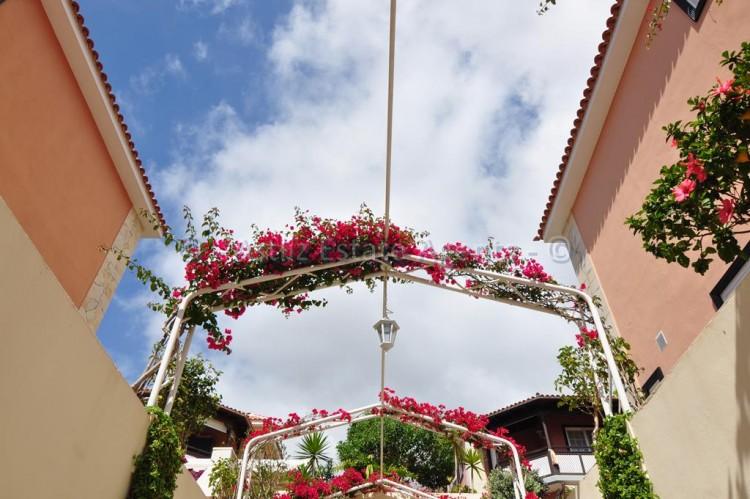Calle La Mesana - El Galeon -