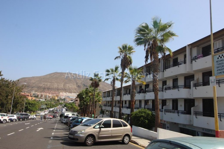 Avenida. Chayofitas - Los Cristianos -