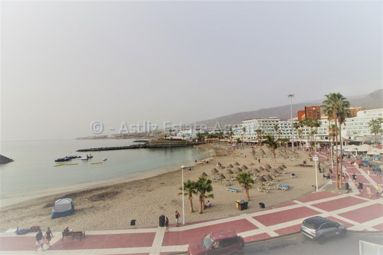 Avda. Colon - Playa De Las Americas -