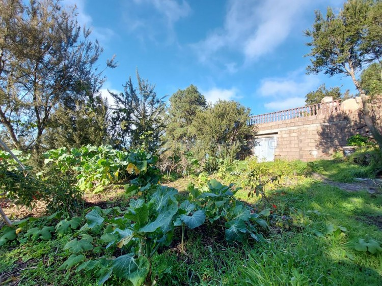 Private rural house - El Tanque -