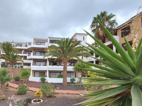 Apartment - For Sale
